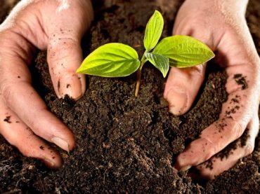 16.04.28 Tertulia con acento – El Día de la Tierra