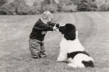 16.07.20 Amigos peludos – Mascotas y bebés