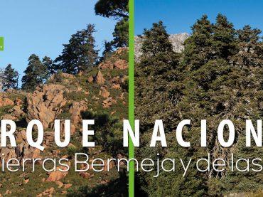 17.04.26 Tierra – Recogida de firmas Sierra Bermeja Parque Nacional