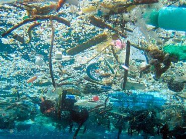17.05.17 Tierra – Basuras marinas II