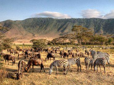 La vuelta al mundo   Tanzania y Zanzíbar