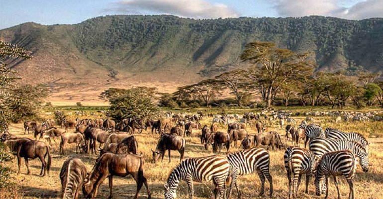 La vuelta al mundo | Tanzania y Zanzíbar