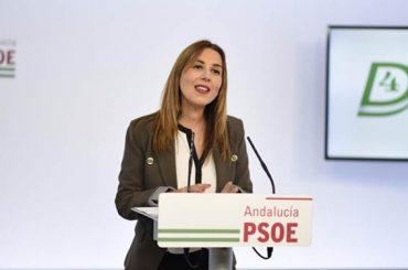 Cada día un partido | PSOE