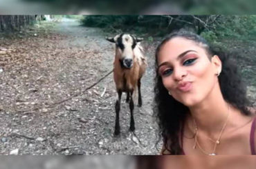 Noticias curiosas | Cabra anti-selfie