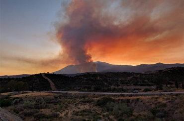 Entrevista Javier Martos | Incendio Peñas Blancas
