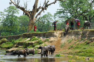 La Vuelta al Mundo | Katmandú (parte 2)