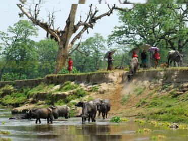 La Vuelta al Mundo   Katmandú (parte 2)